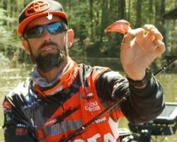 Fish Wake Baits This Spring