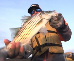 Mike Iaconelli with Striped Bass