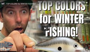 Top Colors for Winter Fishing
