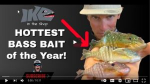 The Hottest NEW Bass Bait of 2021: Gilly