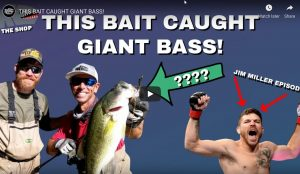 This Bait Caught Giant Bass